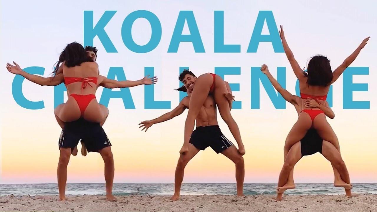 Can You Do The Koala Challenge?